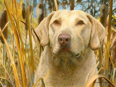 """""""The Moment Before"""" A Limited Edition Chesapeake Bay Retriever Print"""