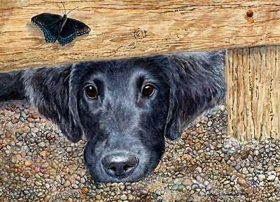 """""""Get It"""" A Limited Edition Flat Coated Retriever Print"""