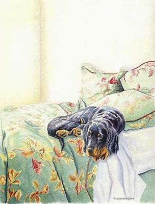 """Keeping it Warm"" A Limited Edition Gordon Setter Print"