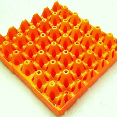IMPORTED SET of 5 STACKABLE PLASTIC EGG TRAYS for EFFICIENT HYGENIC COLLECTION