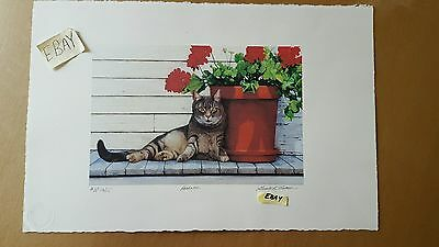 Peekaboo Cat Renown Artist Proof Print Gualo H Lubech Pencil Signed & Ltd HS