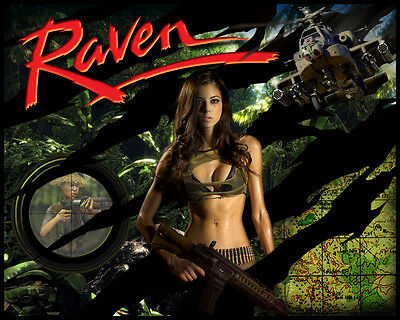 RAVEN Pinball Alternate Translite NEW VERSIONS (3 Choices)