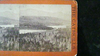Stereoview The Catskills, The Glens of Catskills E & H T Anthony American Views
