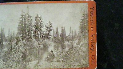 Stereoview Yosemite Valley South Dome from Artist E & H T Anthony American Views