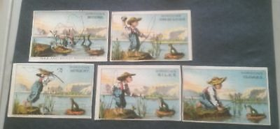 GORDON'S ROCHESTER NEW YORK FROG AND BOY FISHING 5 DIFFERENT Trade Cards 1880'S