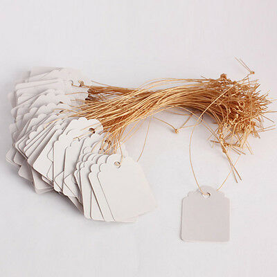 100pcs Waterproof Strip Line Gardening Labels Signs Plant Hanging Tags Mark Gray