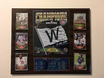 Chicago Cubs 2016 World Series  (1)