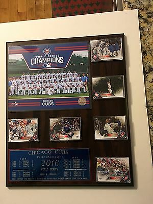 Chicago Cubs 2016 World Series (4)