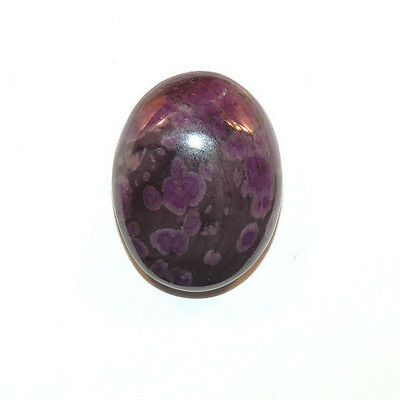 Sugilite Cabochon 19.5x15mm with 6mm dome from South Africa  (11556)