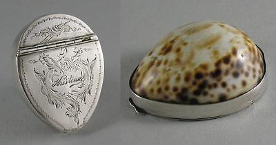 Antique 19th C. Swedish Silver Mounted Cowrie Shell Snuff Box Varberg Visby 1884