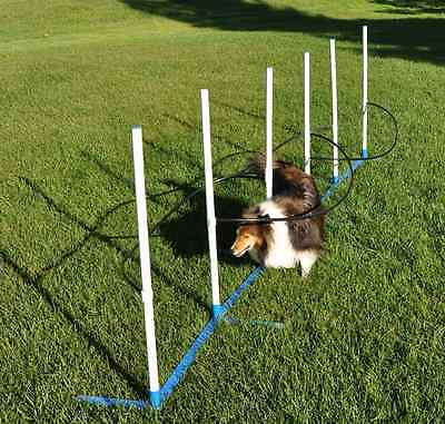 Cool Runners Ultimate Agility Weave Training Solution-Includes 6 Weave Poles wit