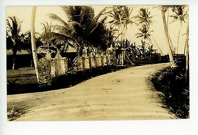 Shady Palm-Lined Road GUAM Antique RPPC Photo ca. 1910s