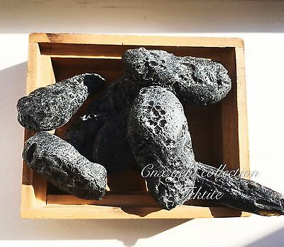One Piece of Raw Rough Natural Nonpolished Gemstone Tektite Meteorite Large Rare