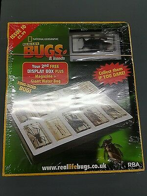 National Geographic Real Life Bugs Collection Rrp 23.96 Free P&p