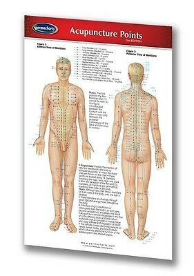 Acupuncture Points Medical Pocket Chart - Quick Reference Guide