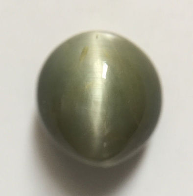 4.60 ct Natural Quartz Cats Eye Greyish Green Excellent Silver Ray Oval Shaped
