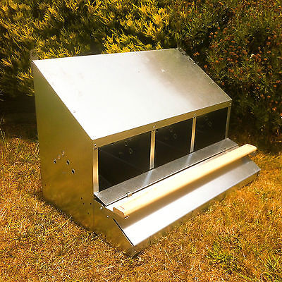 Famous 3-Hole Roll-Away Chicken/hen Nest Box (Clean Whole Eggs/up To 15 Hens)