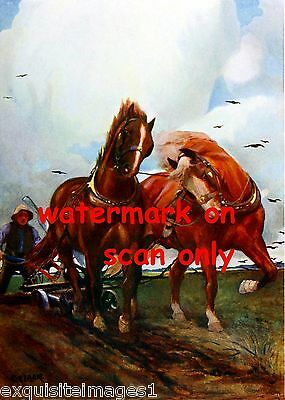 1911~British Suffolk Harnessed Draft Horses~Plowing Field~NEW Large Note Cards