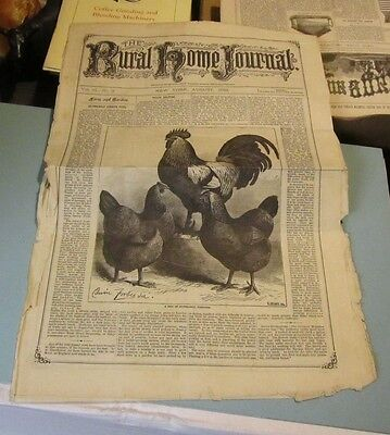 August 1883 The Rural Home Journal Newspaper Silver Gray Dorking Fowl Patterns