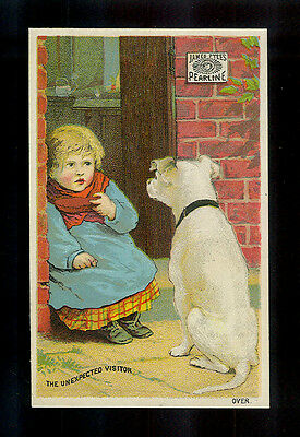 The Unexpected Visitor-Doggie Begs For Girl's Snack-Victorian Trade Card