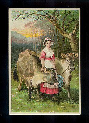 Milkmaid With Her 2 Gorgeous Jersey Milk Cows-Victorian Trade Card