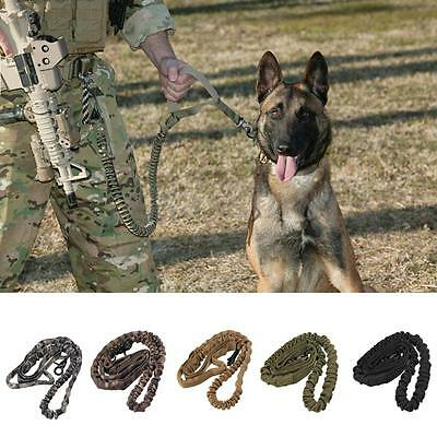 HOT Training Walk Military Tactical Leash Outdoor Puppy Dog Elastic Bungee Strap
