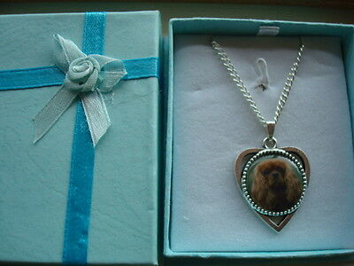 """""""cavalier King Charles Spaniel"""" .  Ruby  Heart Shaped Pendant And Chain.    New"""