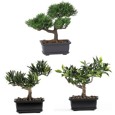 "8.5"" Artificial Set Of 3 Japanese Miniature Silk Bonsai Trees"