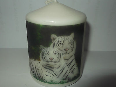 Tiger Candle Gift