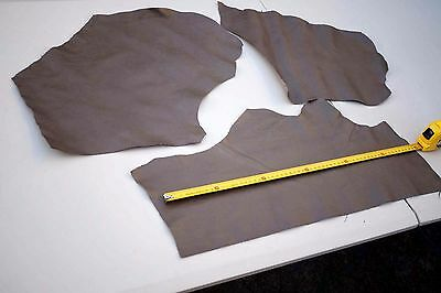 Two tone Beige stingray embossed print cowhide leather pieces/off-cuts bundle