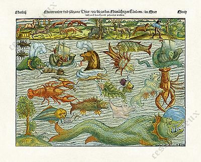 Sea Monsters Chart 1628 Munster antique print woodcut incunabula, reproduction