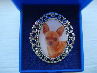 """""""CHIHUAHUA"""".     Brooch. Gift Boxed. Great gift."""
