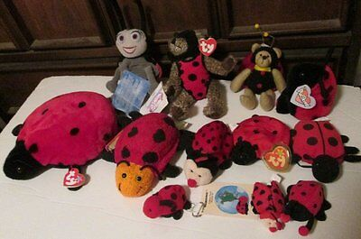 Big lot of 12 Plush LADYBUG toys TY DISNEY bears others most with hang tags