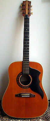 EKO Ranger 6 Vintage Acoustic Guitar, Made in Italy,with soft case.