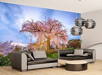 Park in Spring  Wall Mural Photo Wallpaper GIANT WALL DECOR Paper Poster