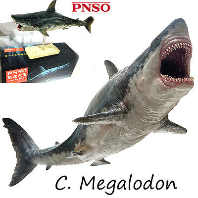 PNSO Rare Megalodon prehistoric sharks Dinosaurs Model toy scientific art Figure
