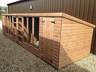 Dog Kennel and Run 16x4 Double