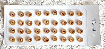 """SET OF 36 VINTAGE 1930s FAWN BROWN TAGUA NUT VEGETABLE IVORY BUTTONS - 3/8"""""""