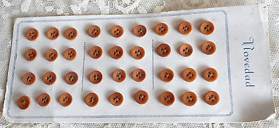 """SET OF 36 VINTAGE 1930s OCHRE TAGUA NUT VEGETABLE IVORY BUTTONS - 3/8"""""""
