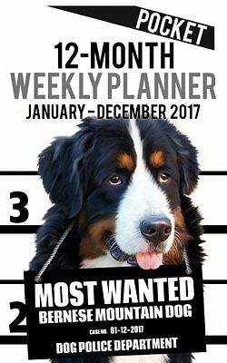 2017 Pocket Weekly Planner - Most Wanted Bernese Mountain Dog: Daily Diary Month