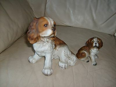 Cavalier King Charles Spaniel And Small Dog Of Unknown Origion