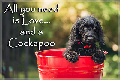 Cockapoo Dog Funny Fridge Magnet New Gift Black puppy