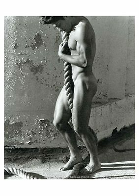 Postcard / Tony Ward with Rope / Herb Ritts / 1986 / Gay Interest