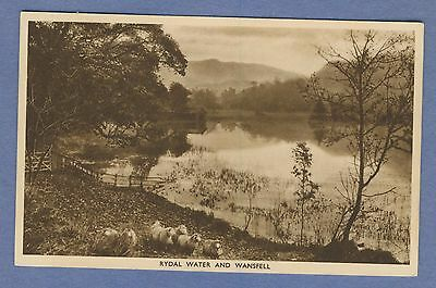 Vintage PC: Rydal Water and Wansfell Ambleside England Sheep Abraham