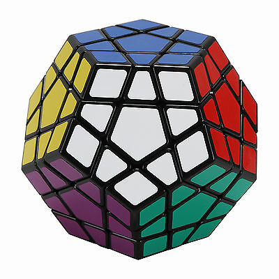 Shengshou Professional Magic Cube Megaminx Dodecahedron Speed Puzzle Game Play