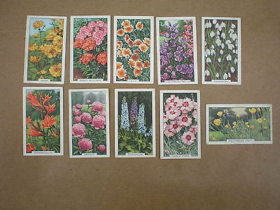 GALLAHER CIGARETTE CARDS    10 cards from Garden Flowers Series