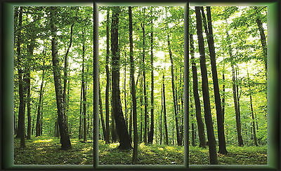 Wall Mural FALLS IN THE FOREST photo wallpaper/WINDOW FOREST