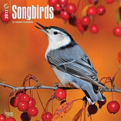 Songbirds 2017 Wall Calendar