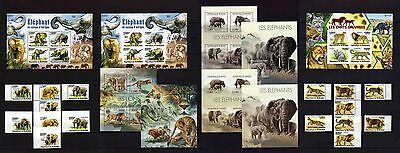Fauna of Africa - elephants, lions and other