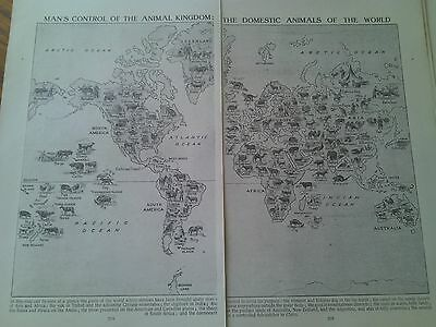 1924 Map of Domestic Animals of the World 2 Pages Ideal to Frame ?
